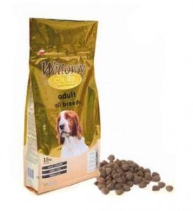 cachorros-puppy-willowy-gold